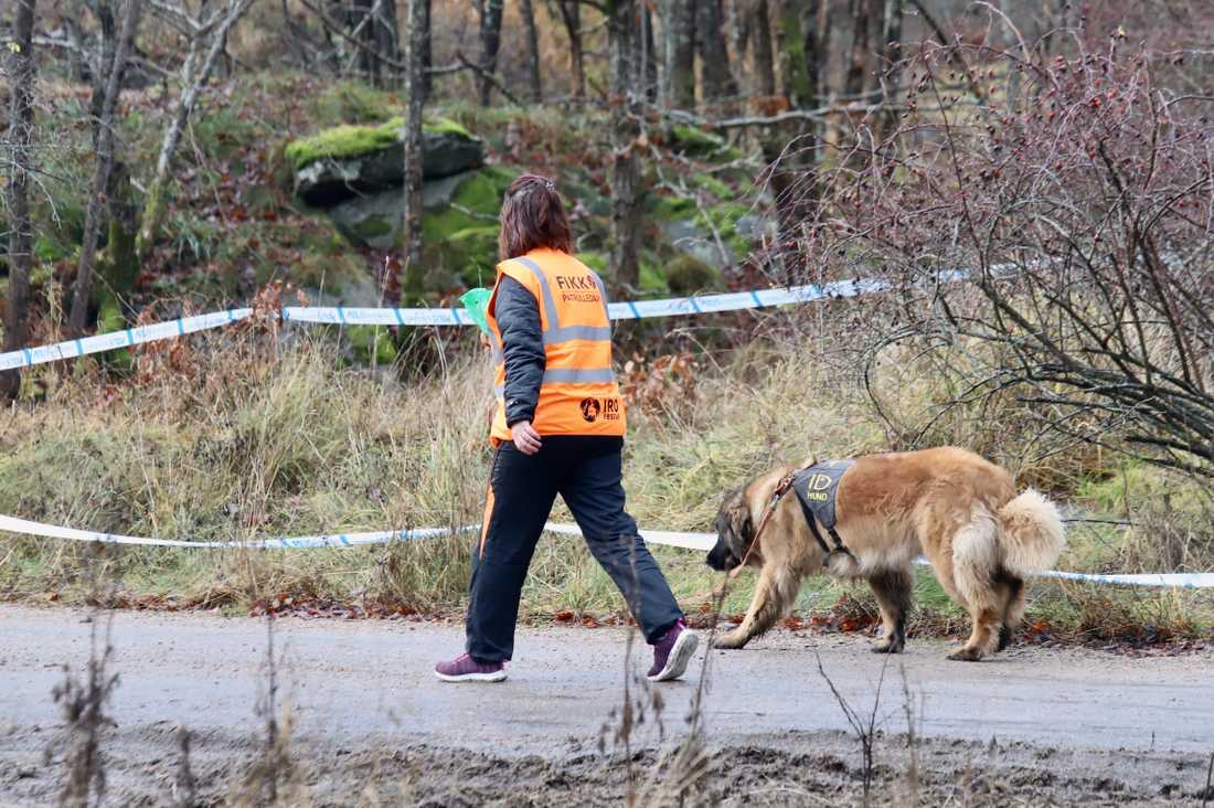 Frivilligorganisationen FIKK söker med hund i området
