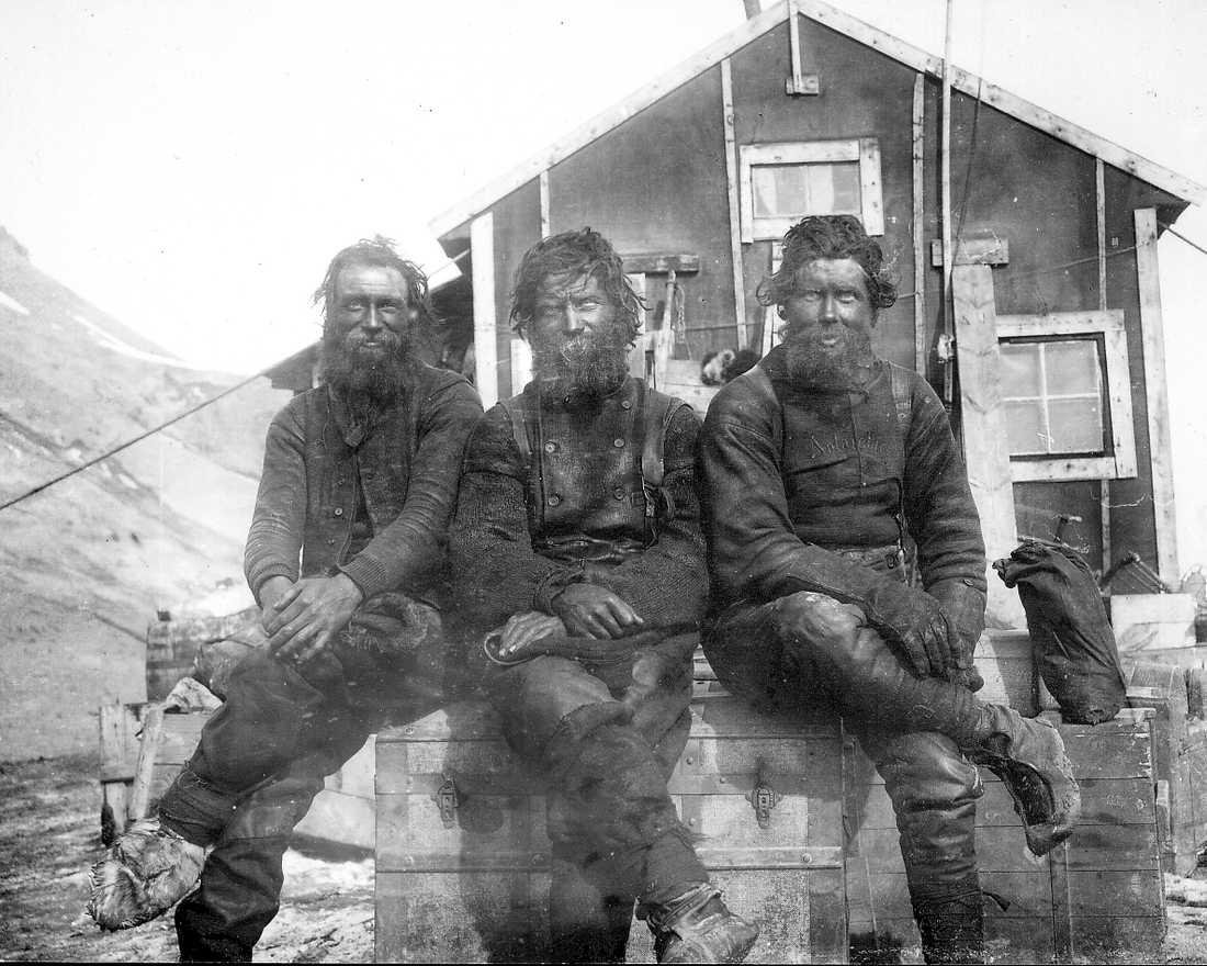 Tre av deltagarna i Nordenskjöldexpeditionen i början av 1900-talet. Från vänster zoolog Karl Andersson, kartograf Samuel Duse och besättningsmannen Toralf Grunden.