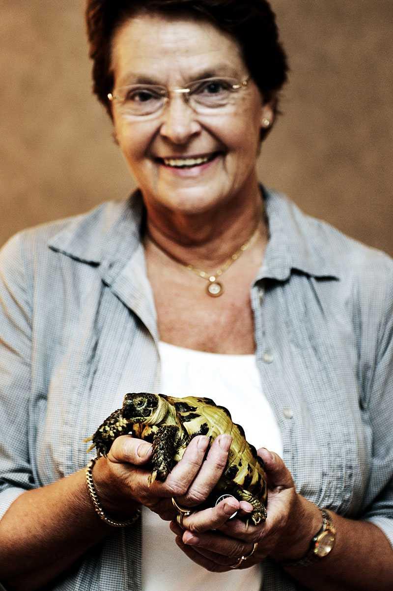 Mimmis matte Monica Sjödahl vill ge sin älskling ett nytt hem där hon kan rulla fritt. Nu säljs Mimmi på Blocket.