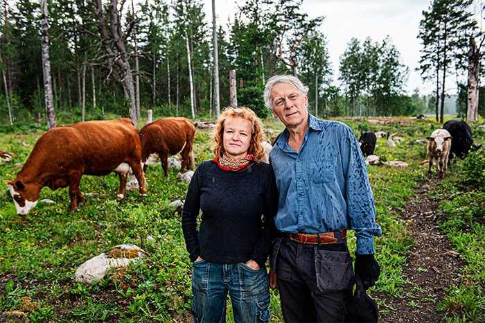 KOR SOM KOLLEGOR Ann-Helen Meyer von Bremen och Gunnar Rundgren är vana att bli ifrågasatta  gällande de utsläpp som nötköttsproduktion medför. De menar dock att det inte går att dra en skarp gräns mellan uppfödning och odling.