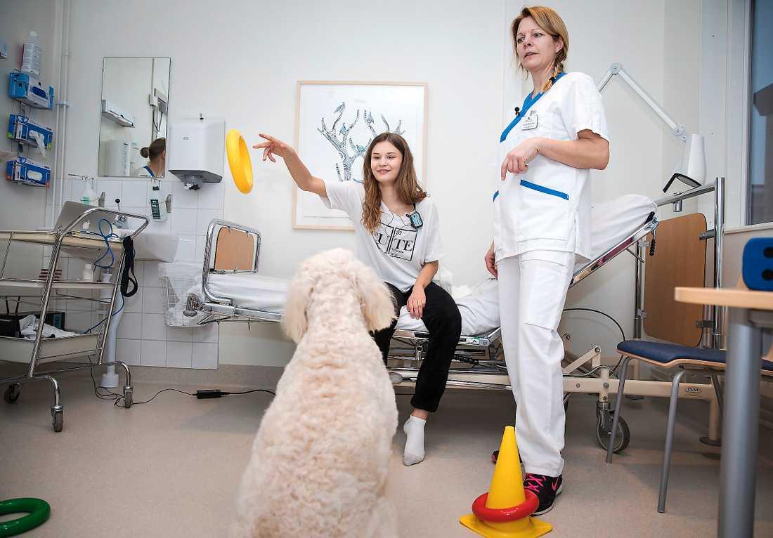 Som terapihund får Livia sin patient Nike att utmana sig själv. Och så har de roligt tillsammans.