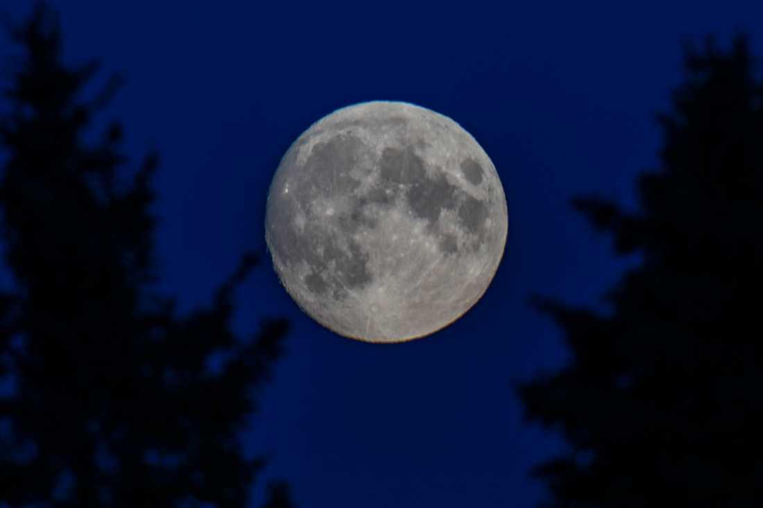 Kina planerar att skicka en sond för att hämta hem månsten nästa vecka. Arkivbild.