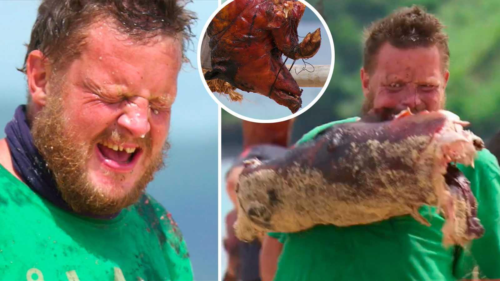 """Robinson""""-deltagaren tappade tänderna – i en gris: """"Svindyrt"""""""