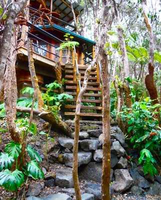 Treehouse at Kilauea Volcano, Big Island, Hawaii Här är en riktig smekmånadsdröm. Om man gillar att bo ett stenkast från en aktiv vulkan, förstås. Den mysiga tvåvåningsträdkojan ligger mitt i regnskogen och har en badtunna på verandan. Den som tröttnar på djungellivet kan promenera till Volcano Village. Pris: 195 dollar per natt (cirka 1300 kronor), 5460 dollar för en månad (cirka 37 000 kronor). Kolla efter billiga flygbiljetter till Hawaii här!