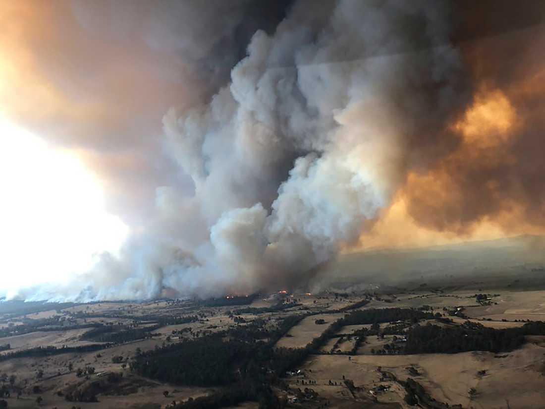 Rök stiger från en skogsbrand vid Bairnsdale i delstaten Victoria I Australien den 30 december i fjol. Rök från bränderna i landet har nu setts över Sydamerika.