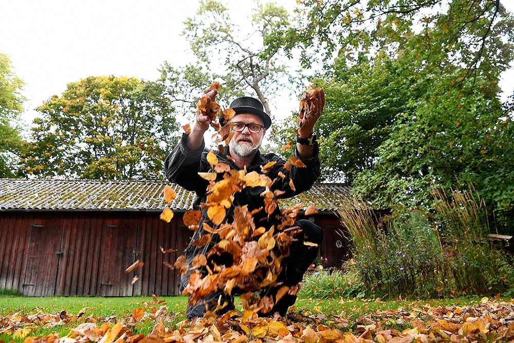 Rent generellt har vi inga näringsproblem i våra trädgårdsjordar utan problemet är strukturen. Så ta vara på löven.