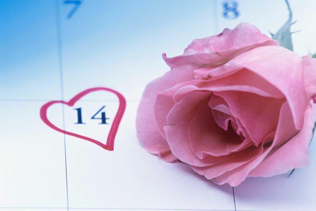 Är du en av alla som längtar till den 14 februari?