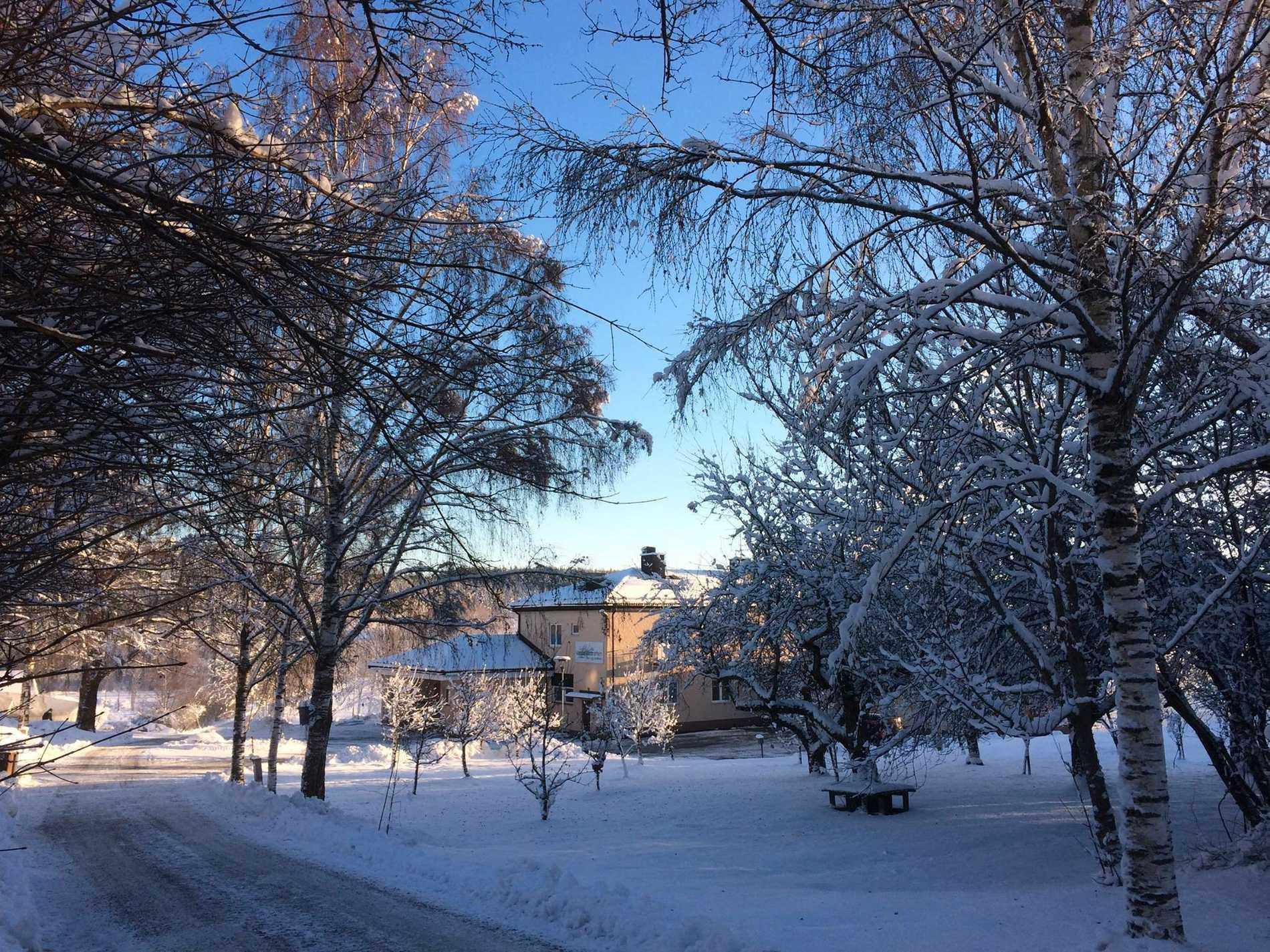 Falun Vassbo Vandrarhem har jobbat hårt på sitt hållbarhetstänk.