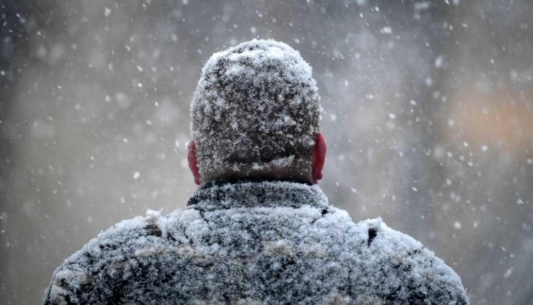 Mer snö än på 20 år i Kirunafjällen.