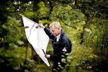 PÅ JAKT EFTER KRYPEN Rolf Gustafson försöker lura fästingarna att bita sig fast i det vita bomullstyget. Vissa av insekterna han fångar används till forskning.