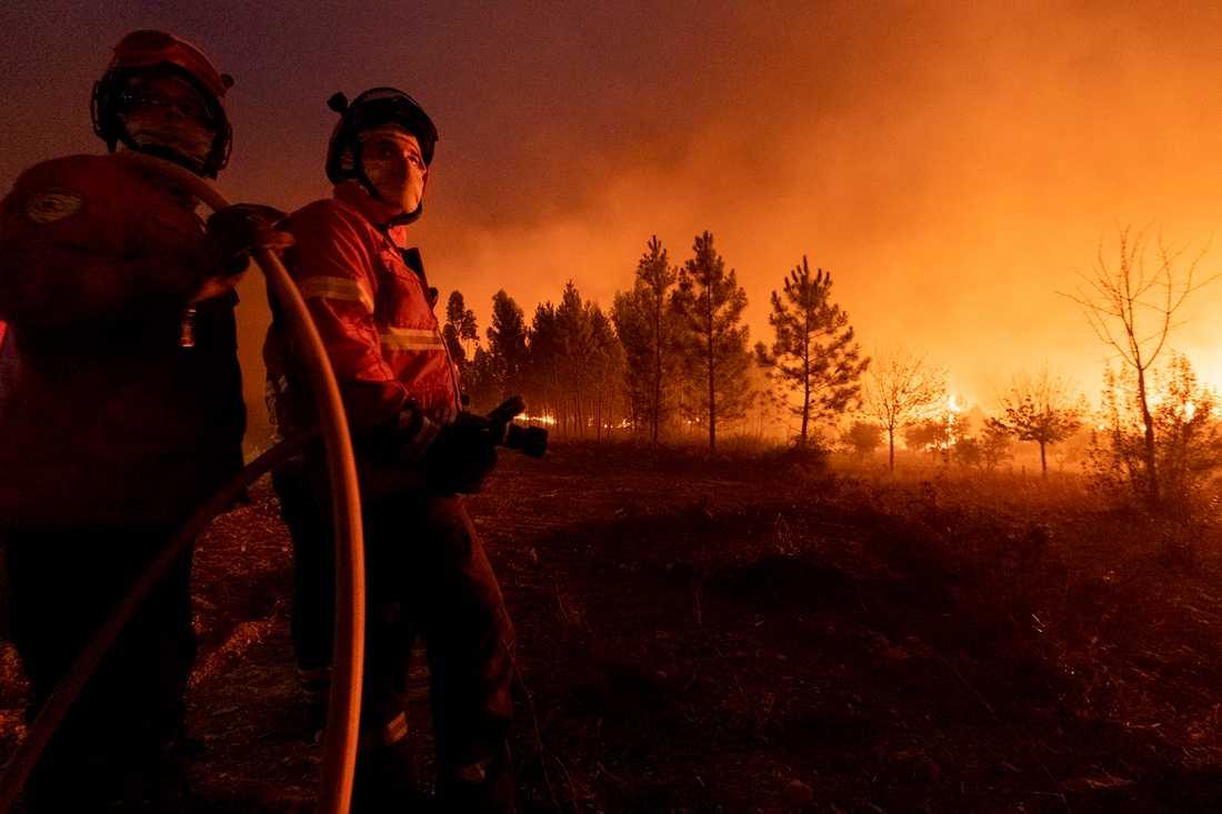 Brandmän kämpar mot lågorna nära byn Cardigos i centrala Portugal 21 juli.
