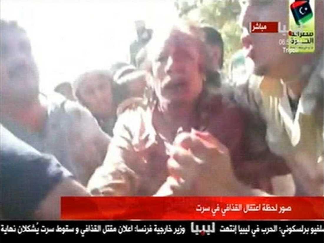 SLÄPADES FRAM Muammar Gaddafi knuffades mellan rebellerna mot ambulansen efter att de hittat honom i ett cementrör i hans hemstad Sirte.