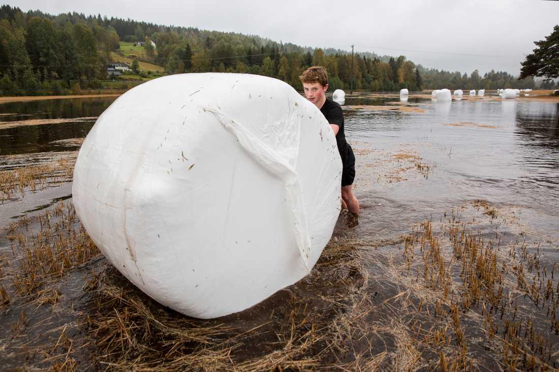 Översvämning på en åker i Buskerud i Norge.