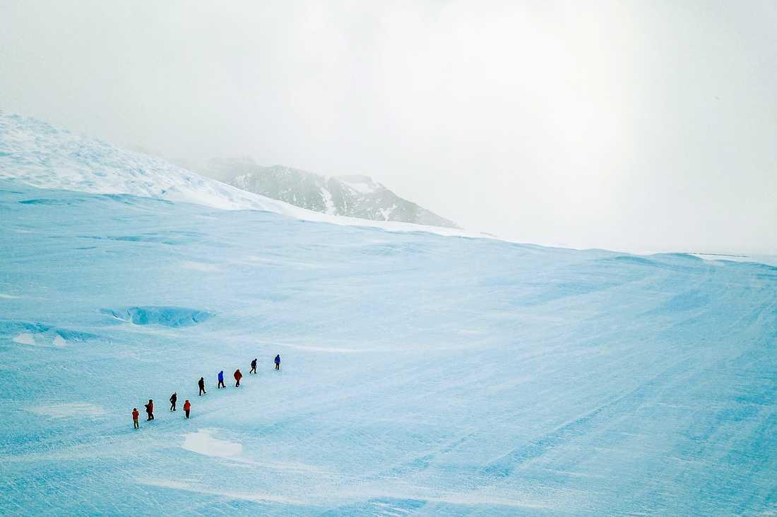 Nu söker Airbnb frivilliga för en resa till Antarktis.