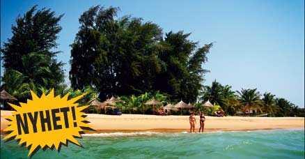 Här i Sely är stränderna långa, vackra och vattnet varmt - häng med till Senegals guldkust.