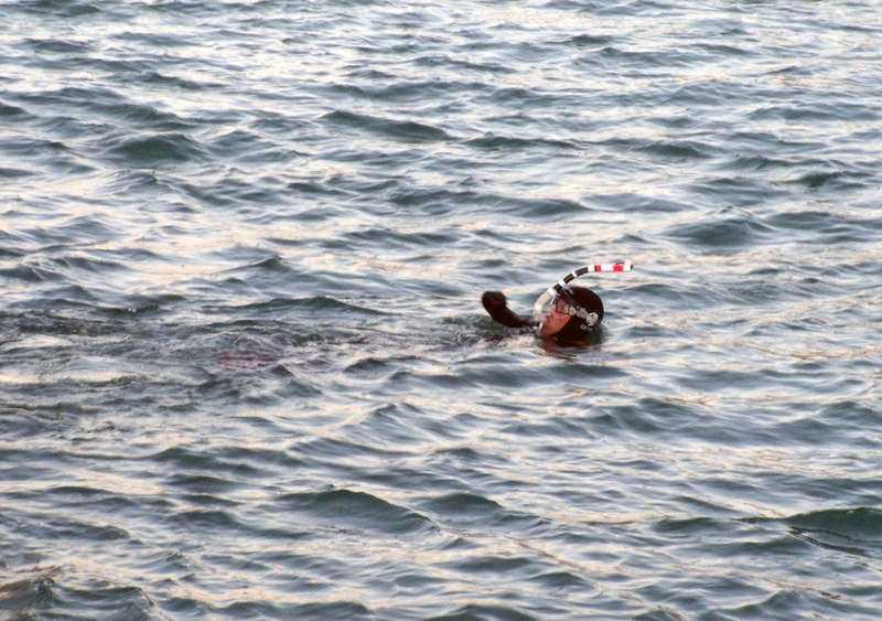 Philippe Croizon Den 42-årige mannen simmade över Engelska kanalen – utan varken armar eller ben. Dessutom kom han i mål betydligt snabbare än planerat, på 13,5 timmar i stället för 24. Till sin hjälp hade han ett par specialdesignade proteser med fenor.