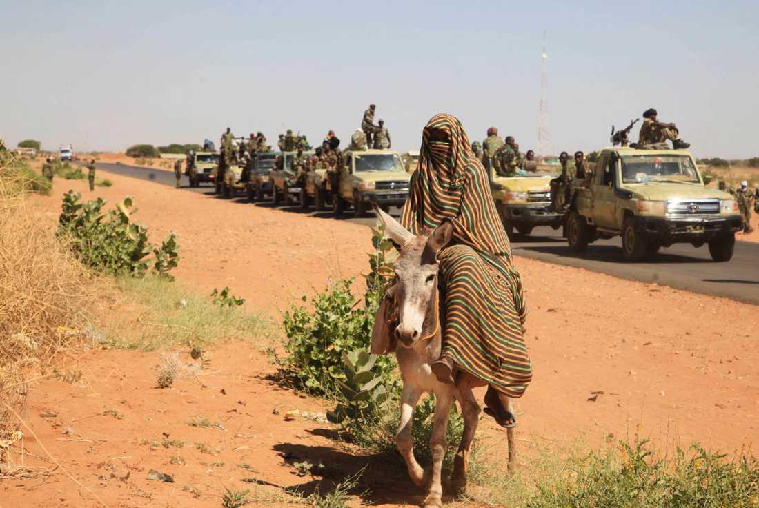 En kvinna på en åsna framför en konvoj av regeringsstyrkor vid byn Tabit i norra Darfur.