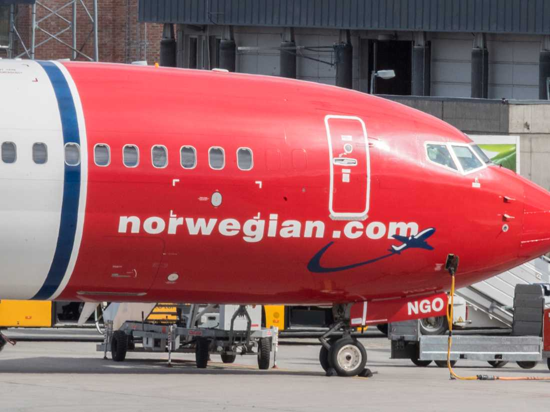 flyga norwegian gravid