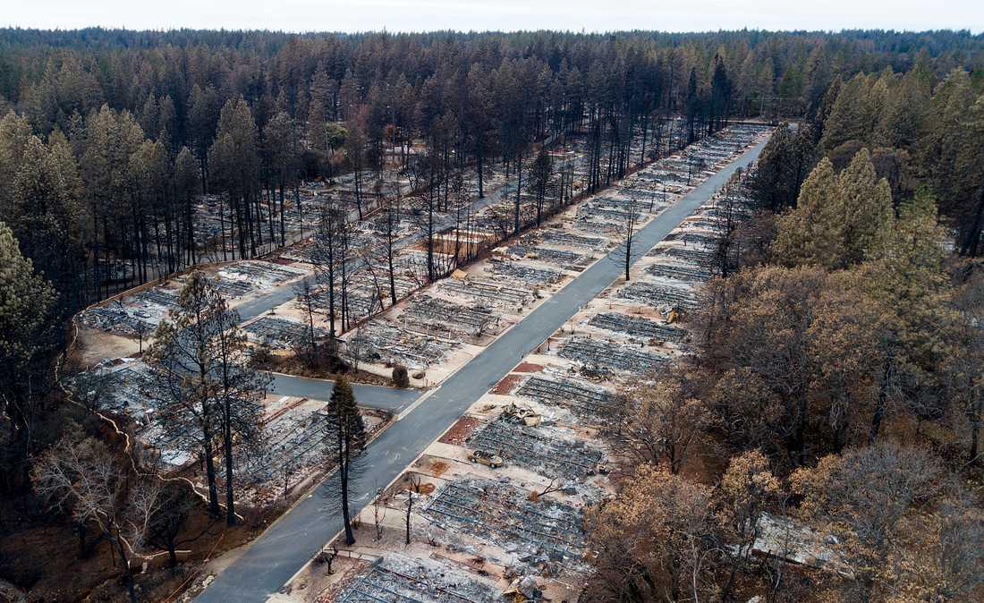 Ett bostadsområde i Paradise i nordöstra Kalifornien som slukades av Camp Fire-eldens lådor i höstas.