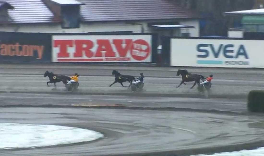 Saga Scott slutade trea efter galopp redan kort efter start.