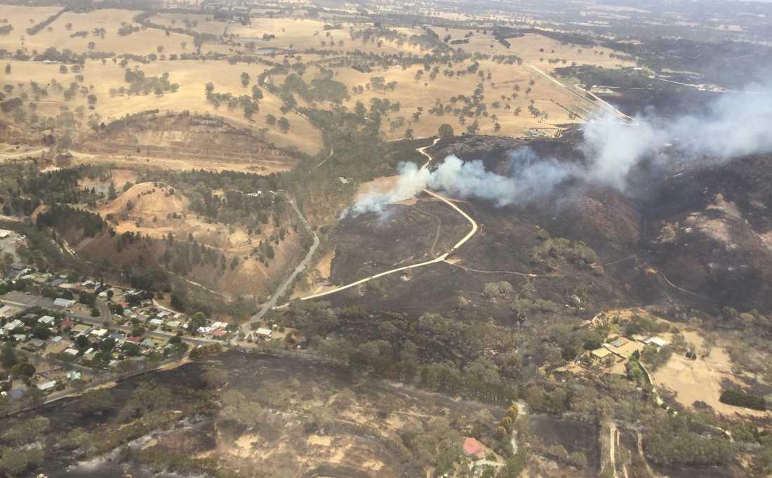 Skogsbränder vid Cudlee Creek i närheten av Adelaide i den australiska delstaten South Australia.