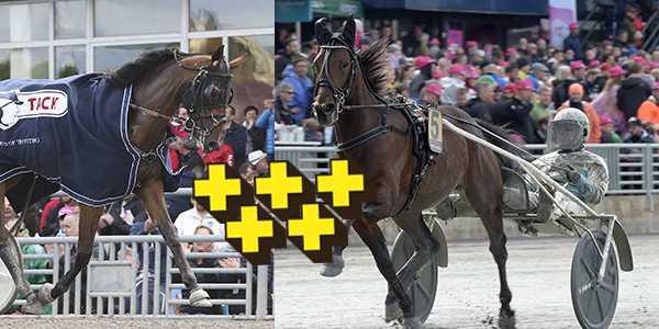 Billie de Montfort och Propulsion är två av 16 Elitloppshästar.
