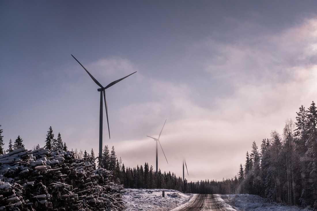Arkivbild på vindkraftverk utanför Piteå.