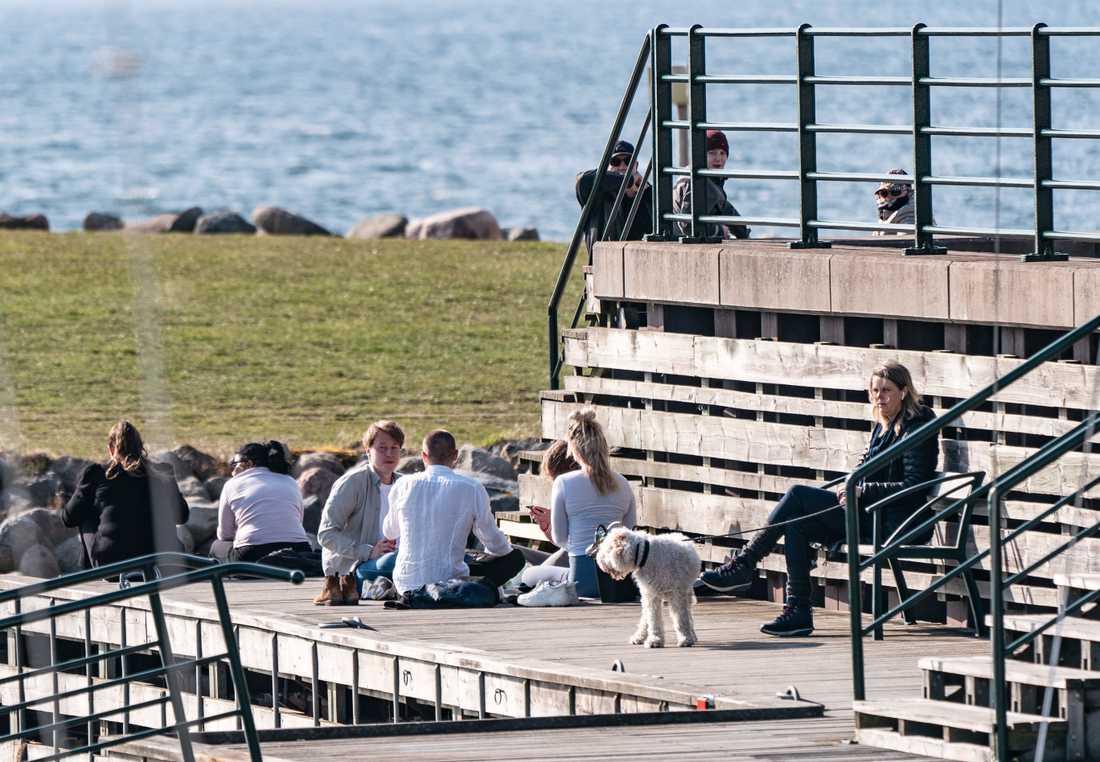 En plats i solen på vid Sundspromenaden i Västra Hamnen när temperaturen hamnade runt 15-graderstrecket i slutet av mars i år.