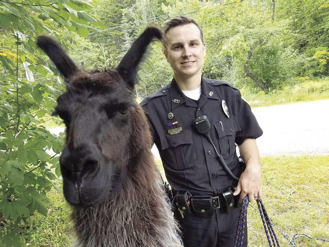Polisen Chris Perley kom och undsatte laman.
