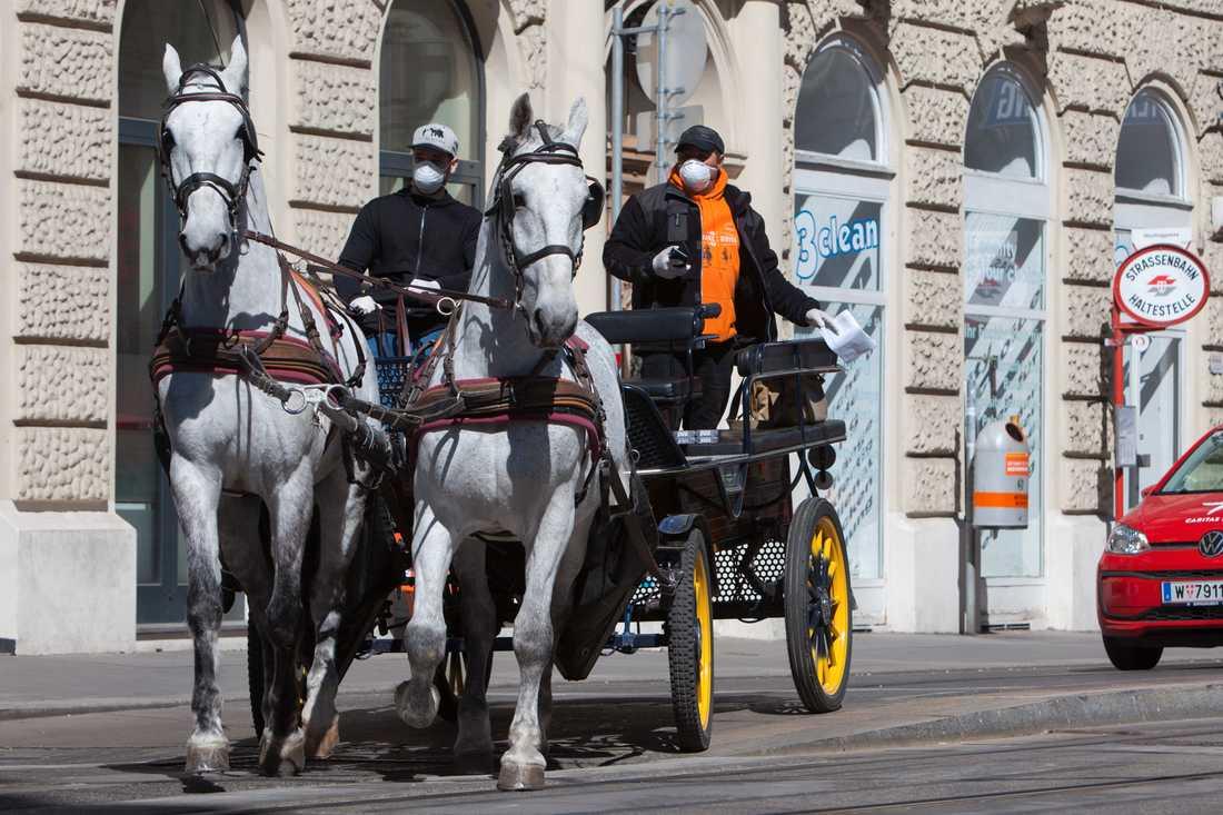 En av Wiens berömda hästdroskor sysslar numera med ett köra ut mat till äldre. Här på uppdrag under onsdagen.