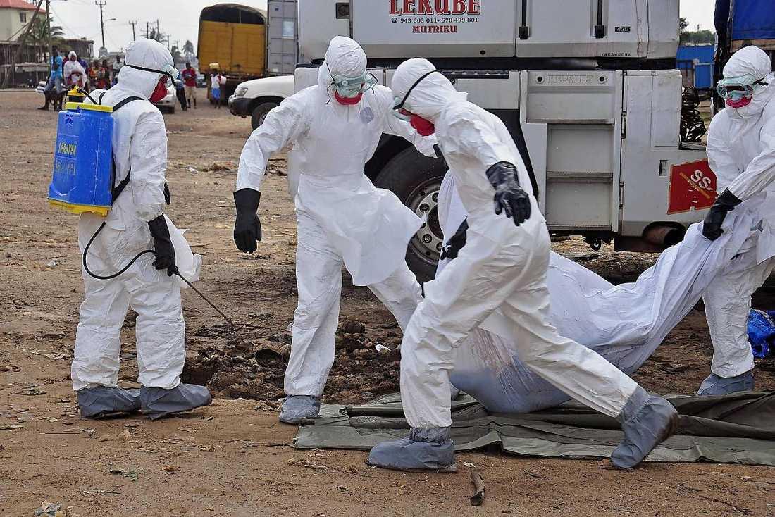 Tusentals i Västafrika har dött i ebola. Men antalet drabbade tros vara mycket större eftersom många sjuka göms undan av sina anhöriga.