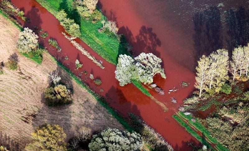 Flygfoton tagna av Greenpeace visar hur det frätande slammet tagit över floderna.