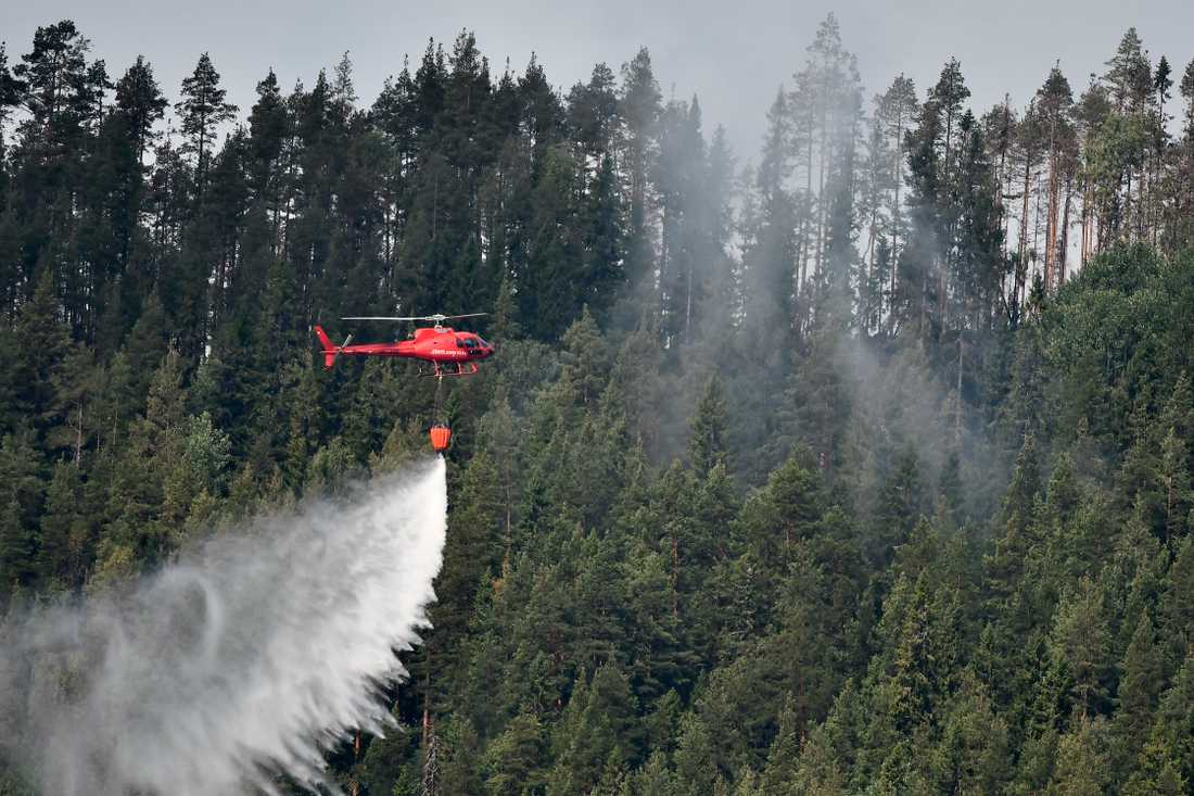 En helikopter samlar vatten under en skogsbrand i Jämtland sommaren 2018. Arkivbild.