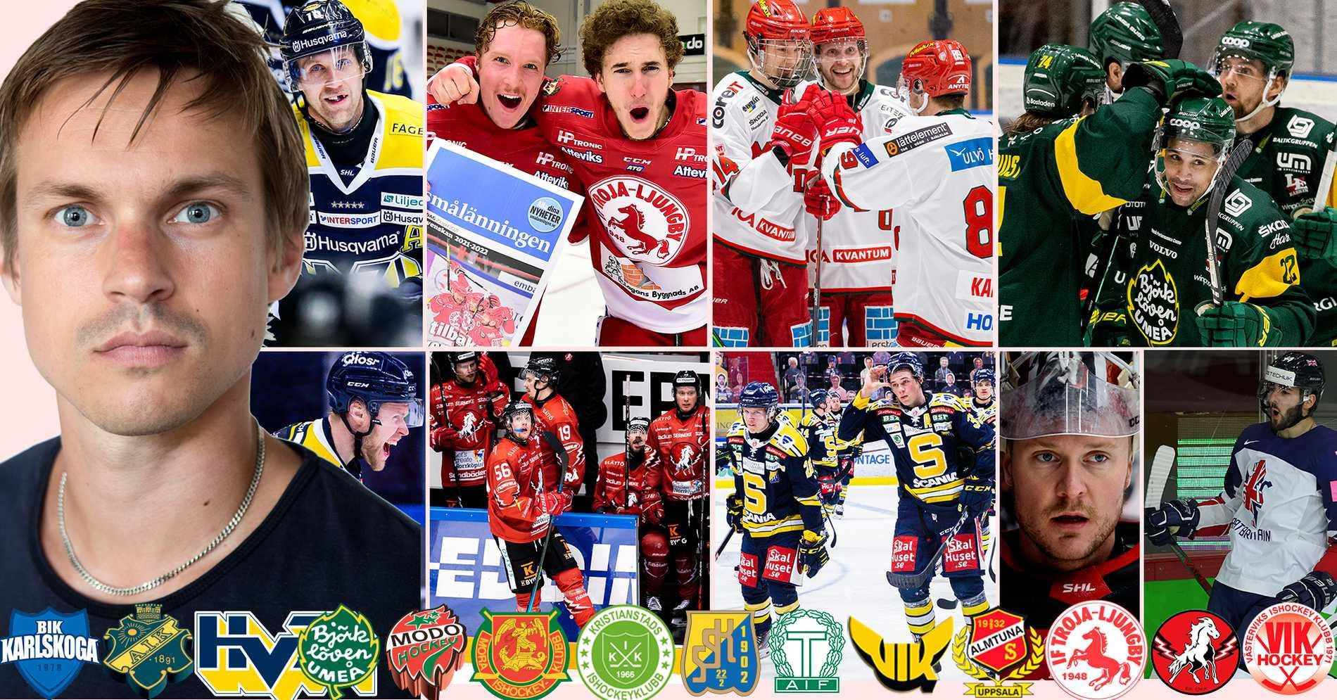 Tio SHL-spelare som skulle bli stjärnor i HockeyAllsvenskan