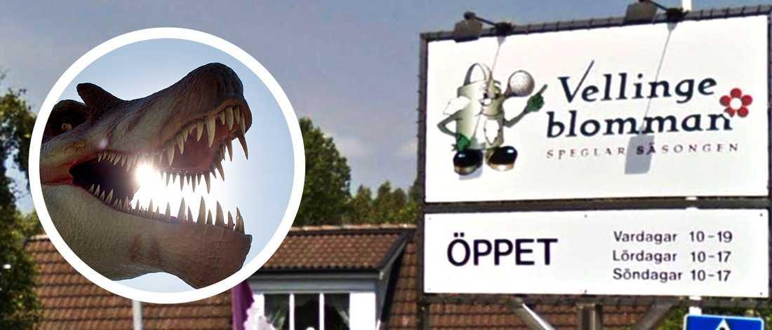 Bilden är ett montage. Dinosaurien på bilden är inte någon av de verk som finns på Vellingeblomman.