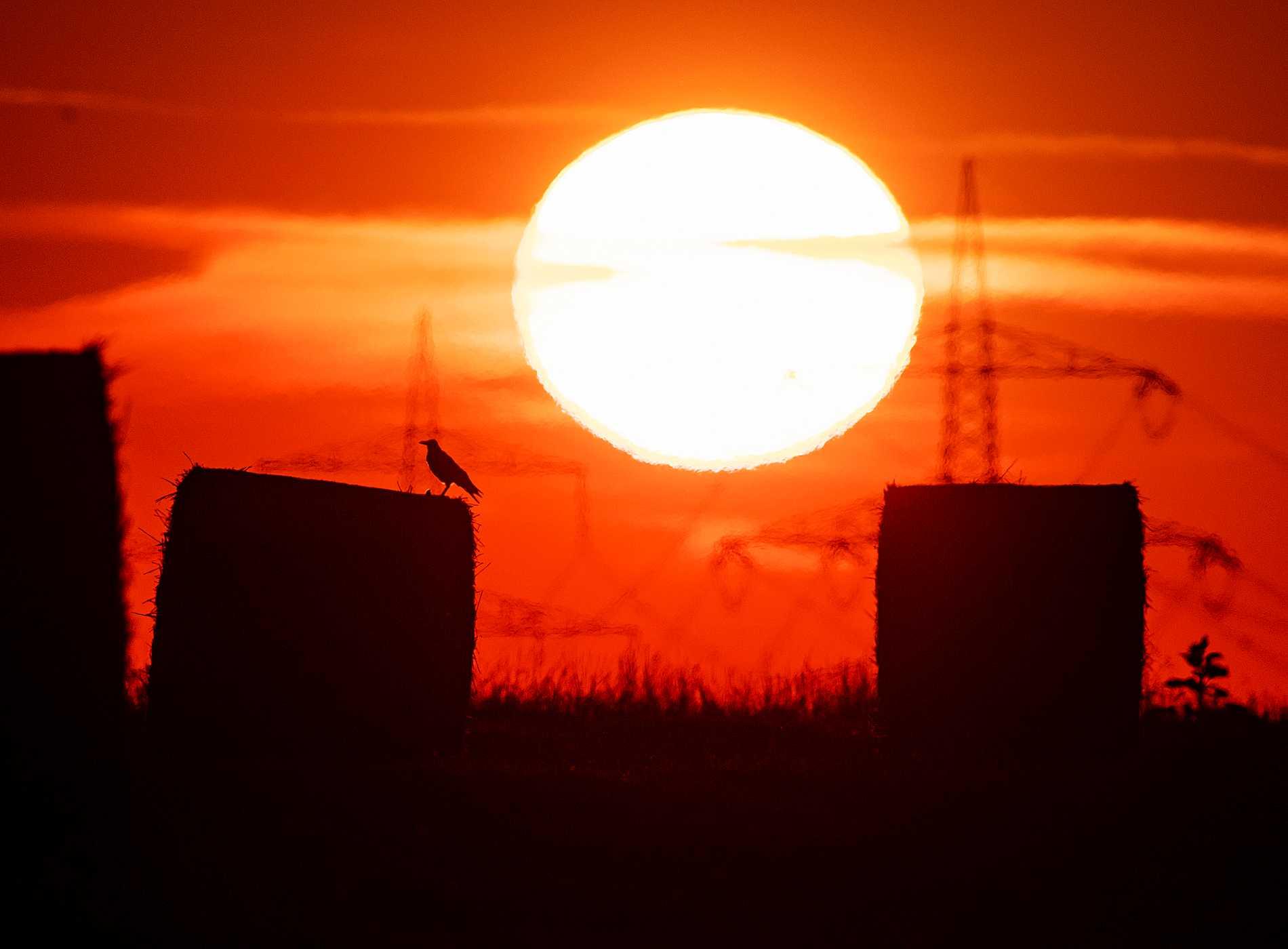 En brännande sol, här i Tyskland, är en vanlig syn på norra halvklotet. Arkivbild.