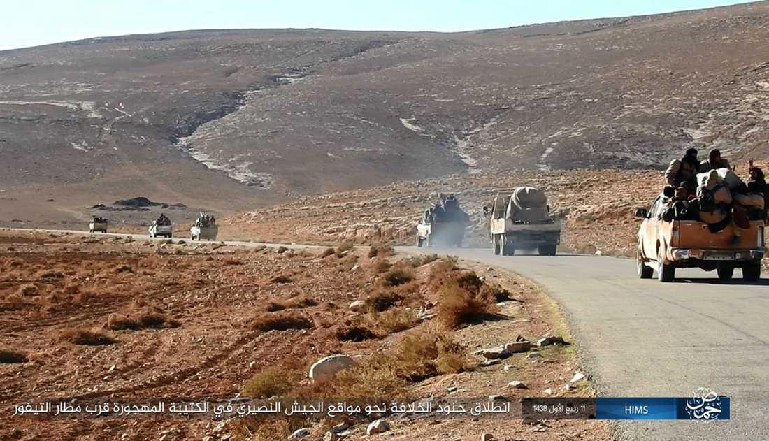 En IS-konvoj på väg genom öknen öster om Palmyra i december 2016. Terrorgruppens fästen finns numera främst i vidsträckta ökenområden i Irak och Syrien. Där tros även en del av de svenska IS-krigarna befinna sig.