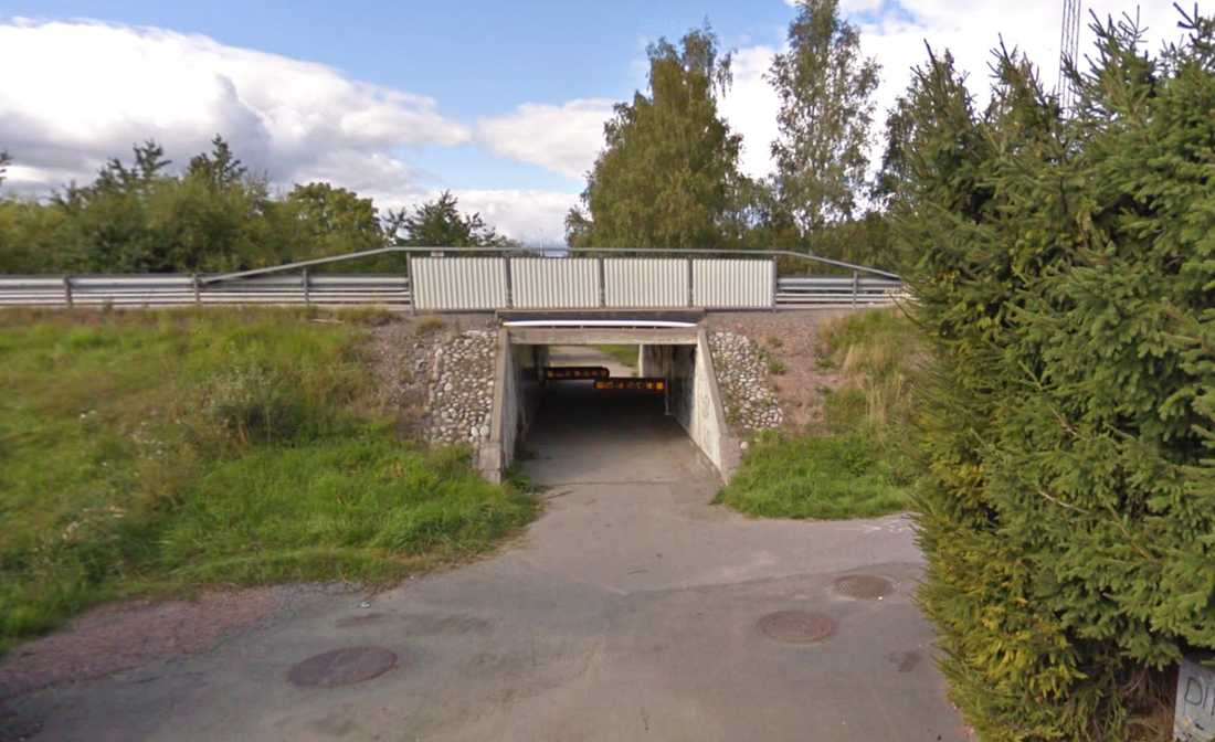 Kvinnan överfölls i en tunnel i Hummelsta.