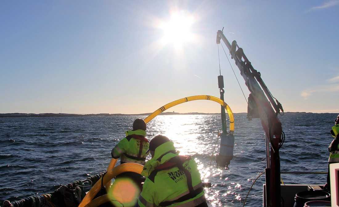 Thetis, ett av Sveriges miljöfarliga vrak, sjönk utanför Smögen 1985 och sanerades i november 2017 med undervattensrobotar. Arkivbild.