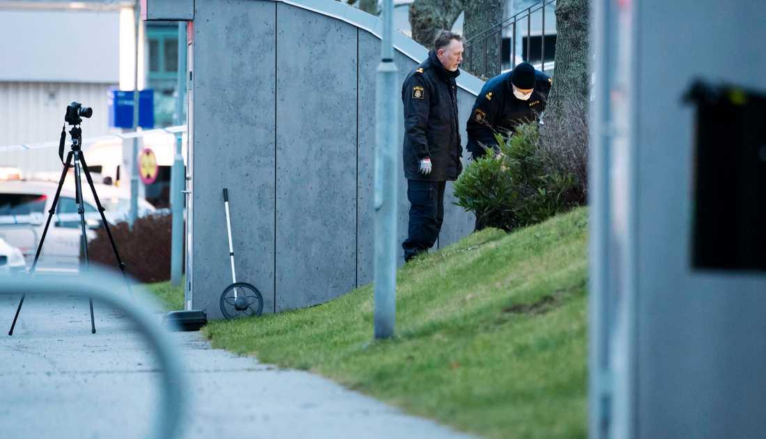 Polistekniker säkrar spår på platsen där den misstänkta våldtäkten ska ha ägt rum.