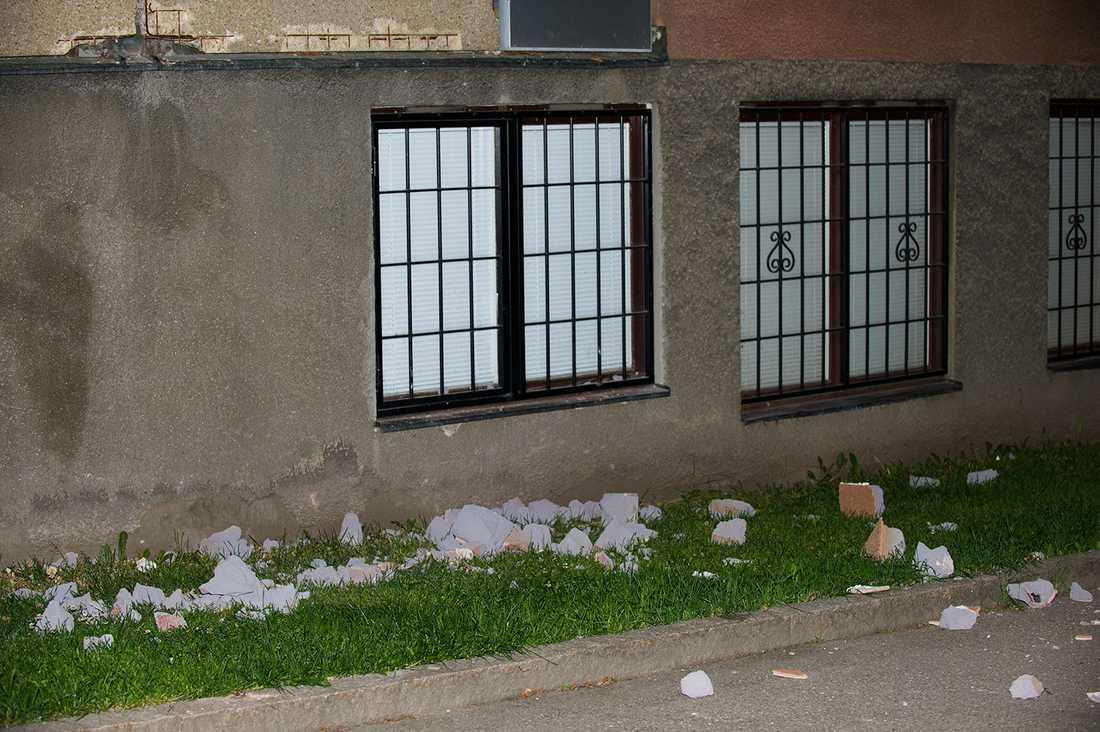 Hunden träffades av fasadputs och fick avlivas.