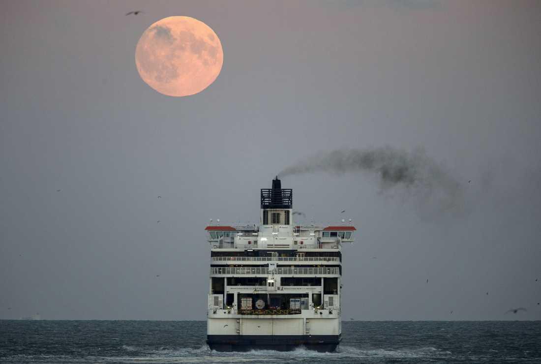 En färja lämnar Dovers hamn.