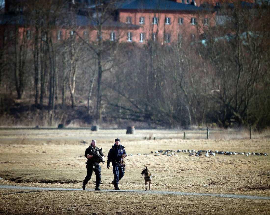 När polisen i söndags sökte efter en beväpnad man rörde det sig i själva verket om en pojke som lekte krig.