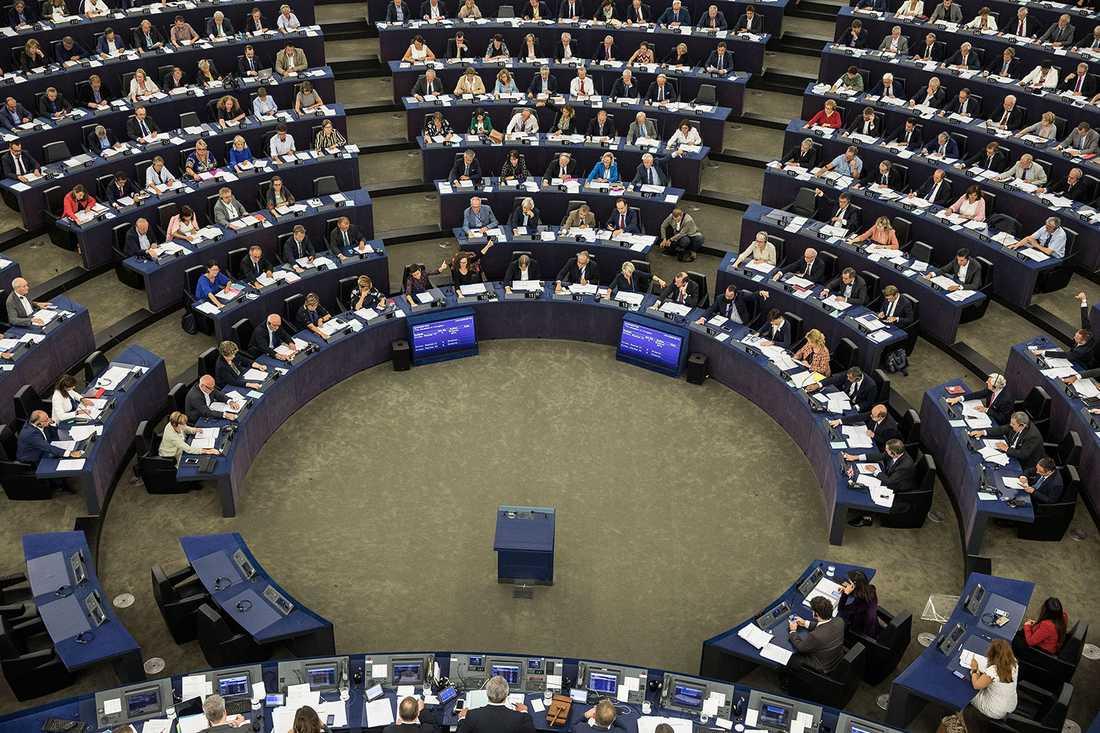 EU-parlamentet har beslut att påbörja en formell granskning av Ungern och dess premiärminister.