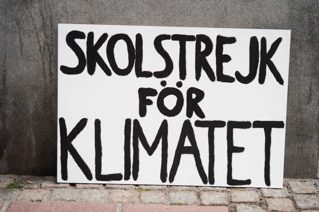 Hennes mål är att flera ska engagera sig i klimatet.