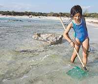 Den som söker hon finner. Marta Llull letar snäckor på stranden d es Trenc. Stranden, som egentligen är ett pärlband av flera olika stränder, är den enda som är helt oexploaterad på Mallorca tack vare att den ligger i ett naturreservat.