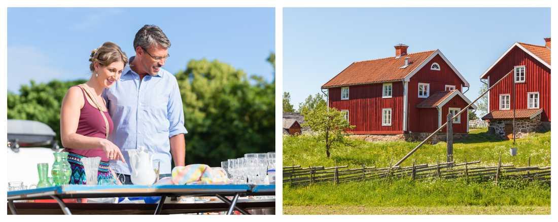 Att åka ut till en gård för att fynda blir allt mer populärt, menar värderingsexperten.