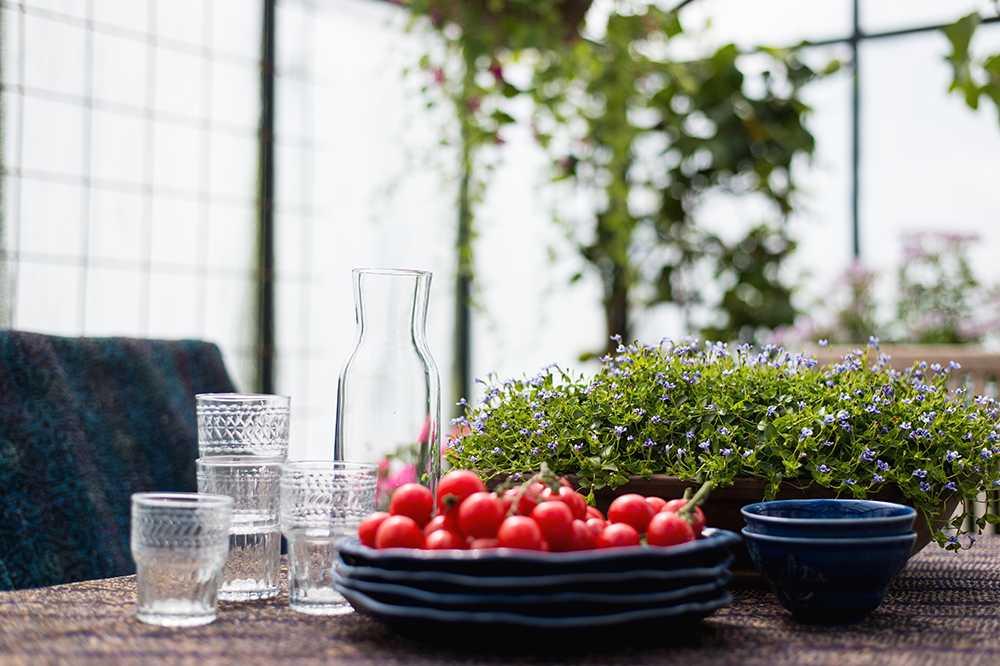 Ett växthus att både odla i och använda som sällskapsrum är populärt.