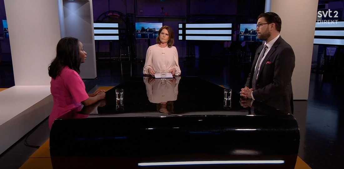 """Sabuni och Åkesson möttes i """"Agenda"""" i SVT."""
