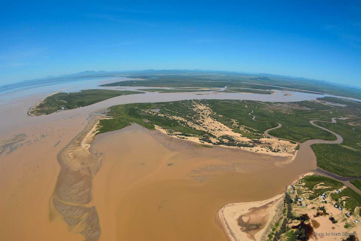 Slam i vattnet vid Burdekin-floden i Queensland, Australien.